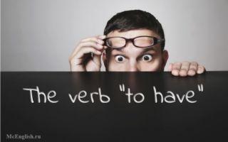 Употребление глагола to have в английском:  правила спряжения, функции, конструкция с got