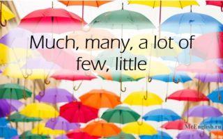 Much many a lot of, few little — количественные местоимения в английском языке (Quantifiers)