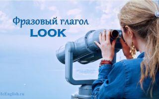 Фразовый глагол Look: использование с предлогами for, forward to, around, out, after — значения и перевод