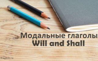 Модальные глаголы Will, Shall: разница между ними, употребление, значения и примеры