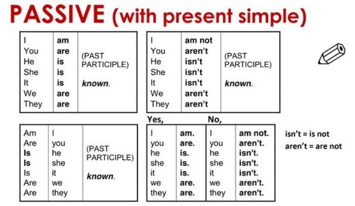 passive present simple